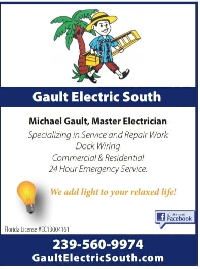 Gault Electric Fall 2020